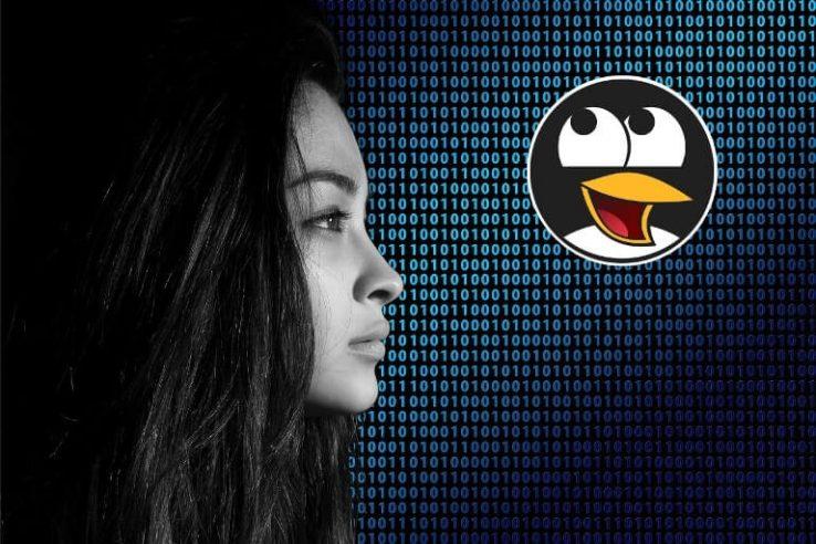 Distribuições Linux focadas em privacidade - Distribuições Linux focadas em segurança