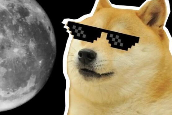 Elon Musk diz que SpaceX vai levar Dogecoin para a Lua