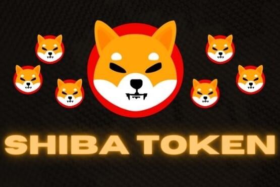 O que é o Shiba Coin ?